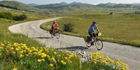 Im Juni blüht und grünt es auf den Hochebenen Montenegros. Foto: Thorsten Brönner
