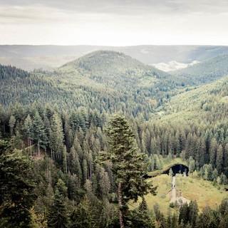 Blick auf den Ellbachsee, Foto: Stefan Kuhn Photography