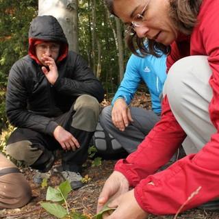 Umweltbildung beim DAV, Foto: Steffen Reich