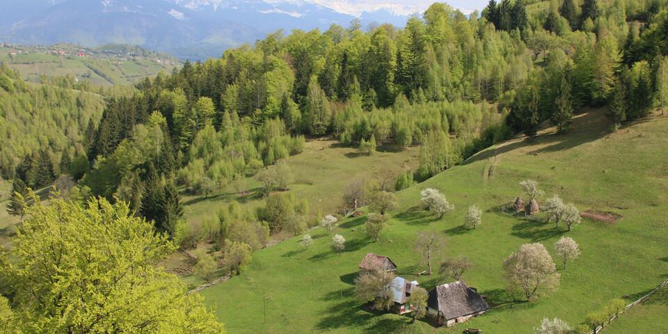 Der Piatra Craiului-Nationalpark lockt mit weltabgeschiedenen Bergpfaden und idyllischen Aussichten. Foto: Win Schumacher, weltwege.de