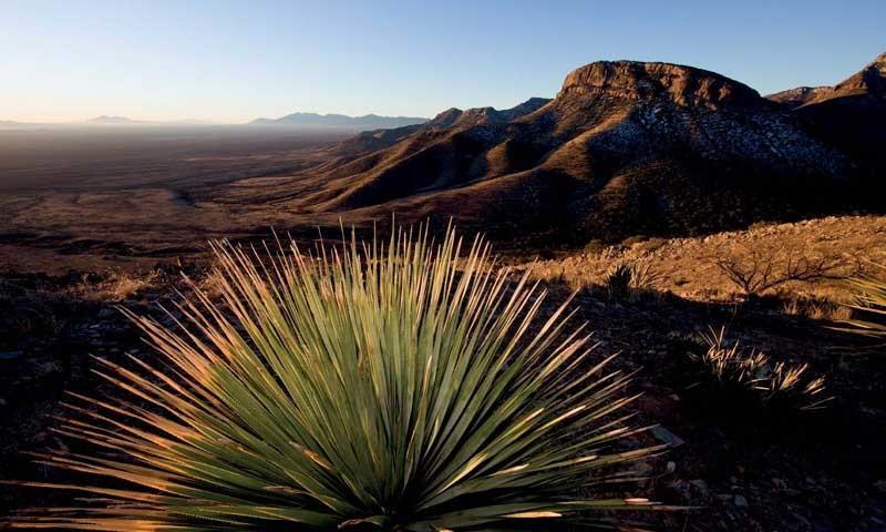 Kartchner Range (Arizona) - Morgenstimmung in der Kartchner Range, Arizona, USA   Foto: Bernd Ritschel