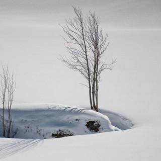 Foto: DAV/Terragraphy.de