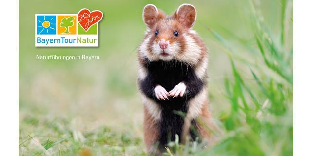 Die 20. BayernTourNatur dieses Jahr mit mehr als 3.000 Veranstaltungen.