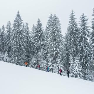 Naturverträglich auf Skitour: #Keepwild von Mountain Wilderness. Foto: Karen Strassel