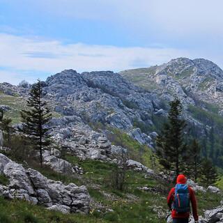 Der Premužić-Trail führt durch herrliche Karstlandschaft Richtung Alan. Foto: Silvia Schmid