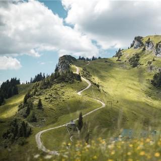 Wandern - ein Sport für Leib und Seele. Foto: DAV/ Klaus Listl