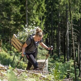 Nachhaltigkeit bedeutet auch anpacken, Foto: JDAV/Silvan Metz