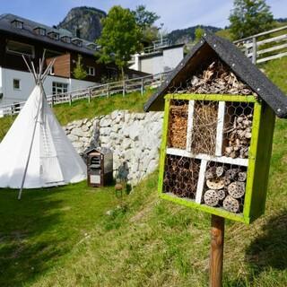 Insektenhotel (gebaut von unseren FÖJler*innen 20/21); Foto: Jubiarchiv