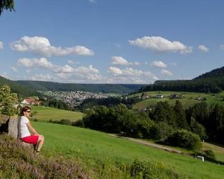 Im Nordschwarzwald finden Wanderer um die Gemeinde Baiersbronn einen wahren Wanderhimmel. Foto: Joachim Chwaszcza
