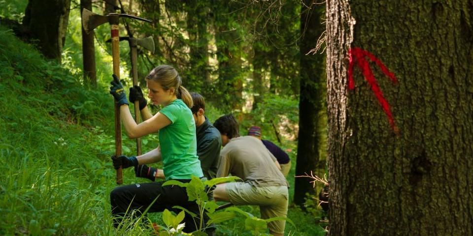 Aktion Schutzwald - Im steilen Gelände werden die Arbeitsgeräte geschwungen, Foto: DAV/Arvid Uhlig