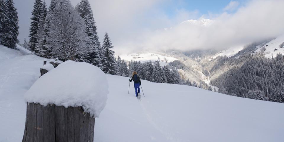 Der Aufstieg zur Schulterhöhe verläuft über Almwiesen und durch lichten Wald. Foto: Ute Watzl