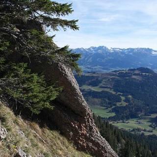 Wie intakt ist Deutschlands Natur? Foto: Jonas Kassner
