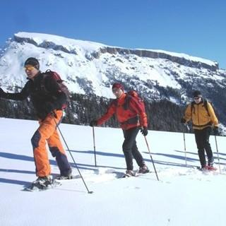 Schneeschuhe als Alternative zu Skiern
