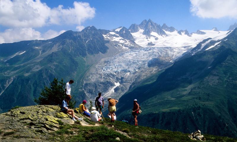 Blick zum Trientgletscher, Montblancmassiv, Frankreich
