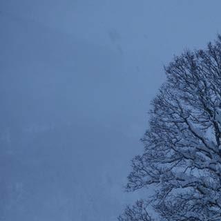 Brendler Lug - Der Brendler Lug ist ein Berg für fast jedes Wetter – für romantische Winterstimmungen allemal.