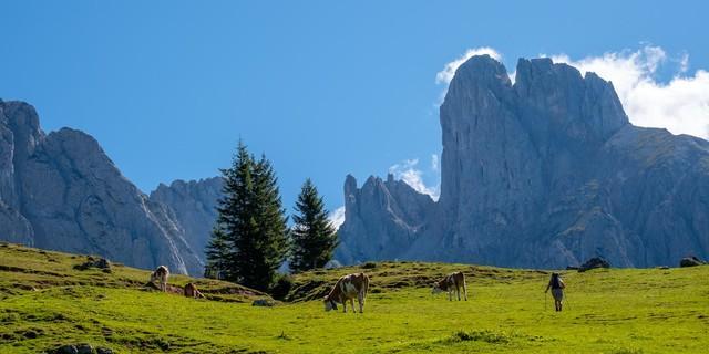 Start auf Almwiesen: darüber reckt sich die Bischofsmütze; Foto: Iris Kürschner