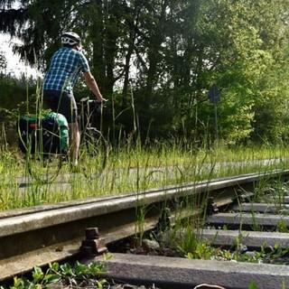 Mit dem Rad durch den Bayerischen Wald - Wie auf Schienen laufen die Räder auf den gepflegten Radwegen. Foto: Thorsten Brönner