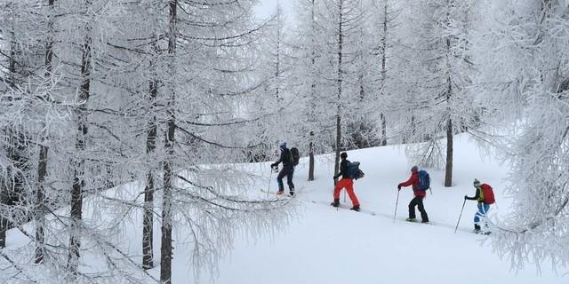 Wunderschön: Aufstieg durch lichte Lärchenwälder. Foto: Stefan Herbke