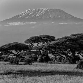 Kilimandscharo in Kanya. Foto: Pixabay/Dobberstein