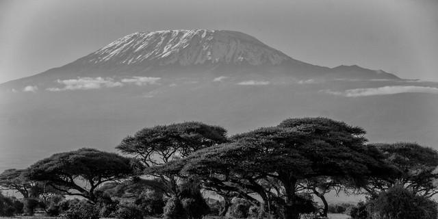Tansania will Seilbahn auf den höchsten Punkt Afrikas. Foto: Pixabay/Dobberstein
