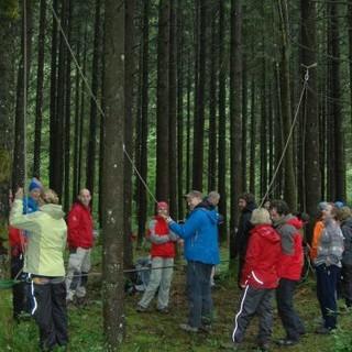 Die Gruppe beim Aufbau niedriger Seilelemente im Wald. Foto: JDAV/ Claudia Wegmann