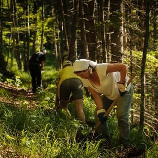 Drei von insgesamt 130 fleißigen Helferinnen und Helfern, Foto: DAV/Arvid Uhlig
