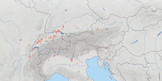 UNESCO-Welterbestätte: Übersicht der prähistorischen Pfahlbauten in den Alpen. Abbildung: www.palafittes.org
