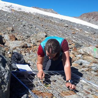 Vegetationsaufnahme im Gletschervorfeld des Zufallferners (Martelltal). Foto: Svenja Müller