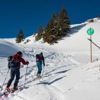Naturverträgliches Skitourengehen. Foto: DAV/Daniel Hug