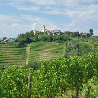 Weinberge und kleine Dörfer prägen das Collio, das bekannte Weingebiet im Friaul. Foto: Christof Herrmann
