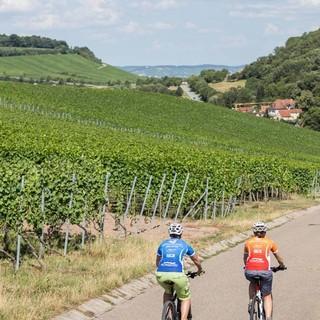 Foto: Touristikgemeinschaft Heilbronner Land und Partner