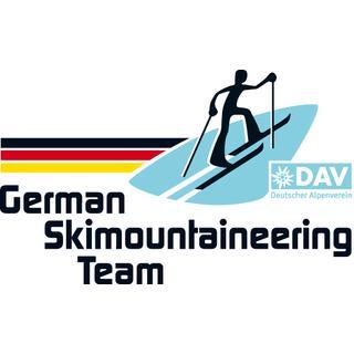 Logo GSM Team RGB