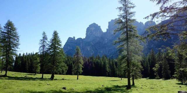 Von Forno di Zoldo erreicht man das weitläufige Almgelände der Malga Prampèr im Belluneser Nationalpark. Foto: Joachim Chwaszcza