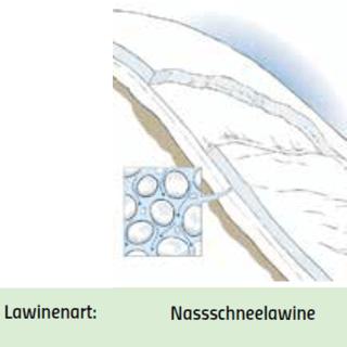 Nassschneelawine