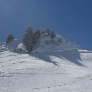 Aufstieg zur Gehrenspitze - Die Gehrenspitze ist eines der hübschen Ziele im angenehm stillen Laternsertal.