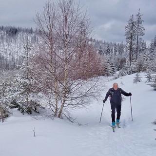 Mit dem Waldführer unterwegs zum Lusen im südlichen Teil des Nationalparks: Der Experte kennt die Region - und viele spannende Geschichten. Foto: Joachim Chwaszcza