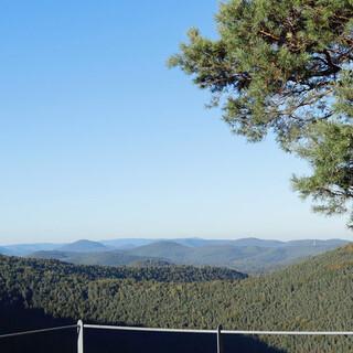 Der Weinsteig führt zu vielen Felsen mit Blick auf den Pfälzerwald. Foto: Günter Kromer