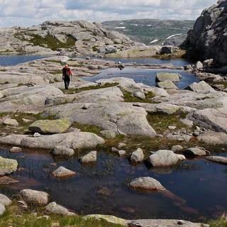 Das steinige Kvernafjell weit oberhalb des Lysefjords fasziniert mit nordischer Kargheit. Foto: Antes & Antes