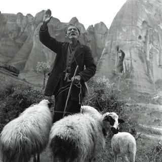 Griechischer Schäfer. Paul Amasy, um 1960