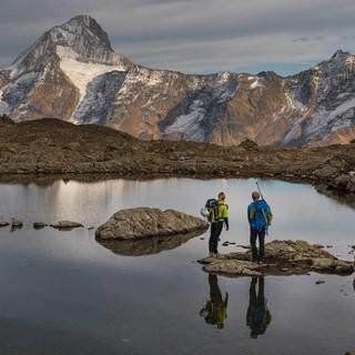 Start zum Balmhorn; den Blick vom Lötschenpass dominiert das Bietschhorn. Foto: Ralf Gantzhorn