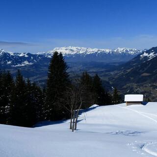 Die Skitour auf den Hohen Fraßen führt anfangs über offene Wiesen. Foto: Stefan Herbke