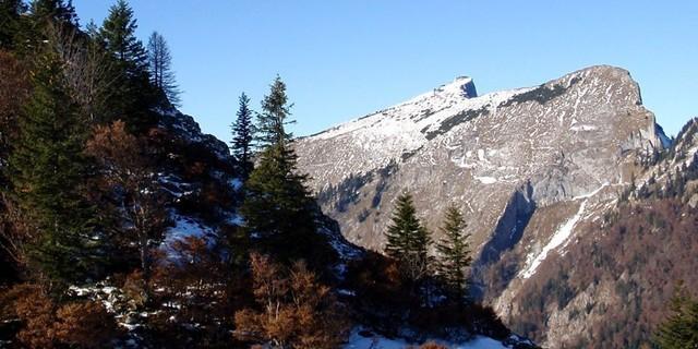 Foto: Karl Linecker/alpenvereinaktiv.com