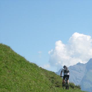 Mountainbiker auf kleinem Pfad