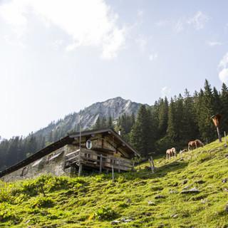 Selbstversorgung auf bewirtschafteten Hütten: So geht es