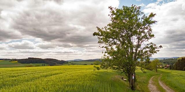 Südöstlicher Rand des Frankenwalds, am Horizont zu erkennen ist der 794 Meter hohe Döbraberg. Foto: Christof Herrmann