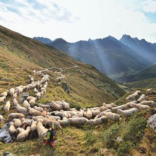 Am Arlberg, Foto: S. Mallaun