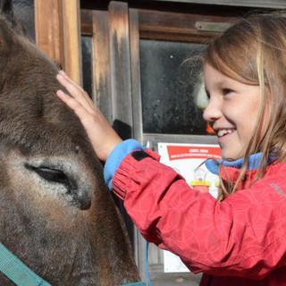 Alpines Bergwandern stößt bei Kindern nicht immer auf Begeisterung. Doch Esel scheinen ein sehr starkes Argument zu sein. Foto: Solveig Michelsen