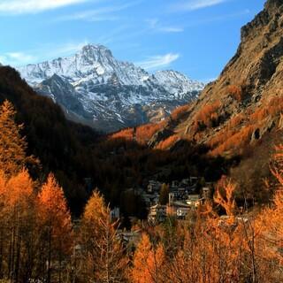 Balme im Herbst - Foto: Gianni Castagneri