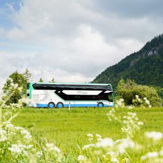 Bergbus(1) web