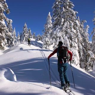 Die Bayerischen Voralpen sind (wie hier gestern am Grasleitenkopf) derzeit tief verschneit. Foto: M. Pröttel